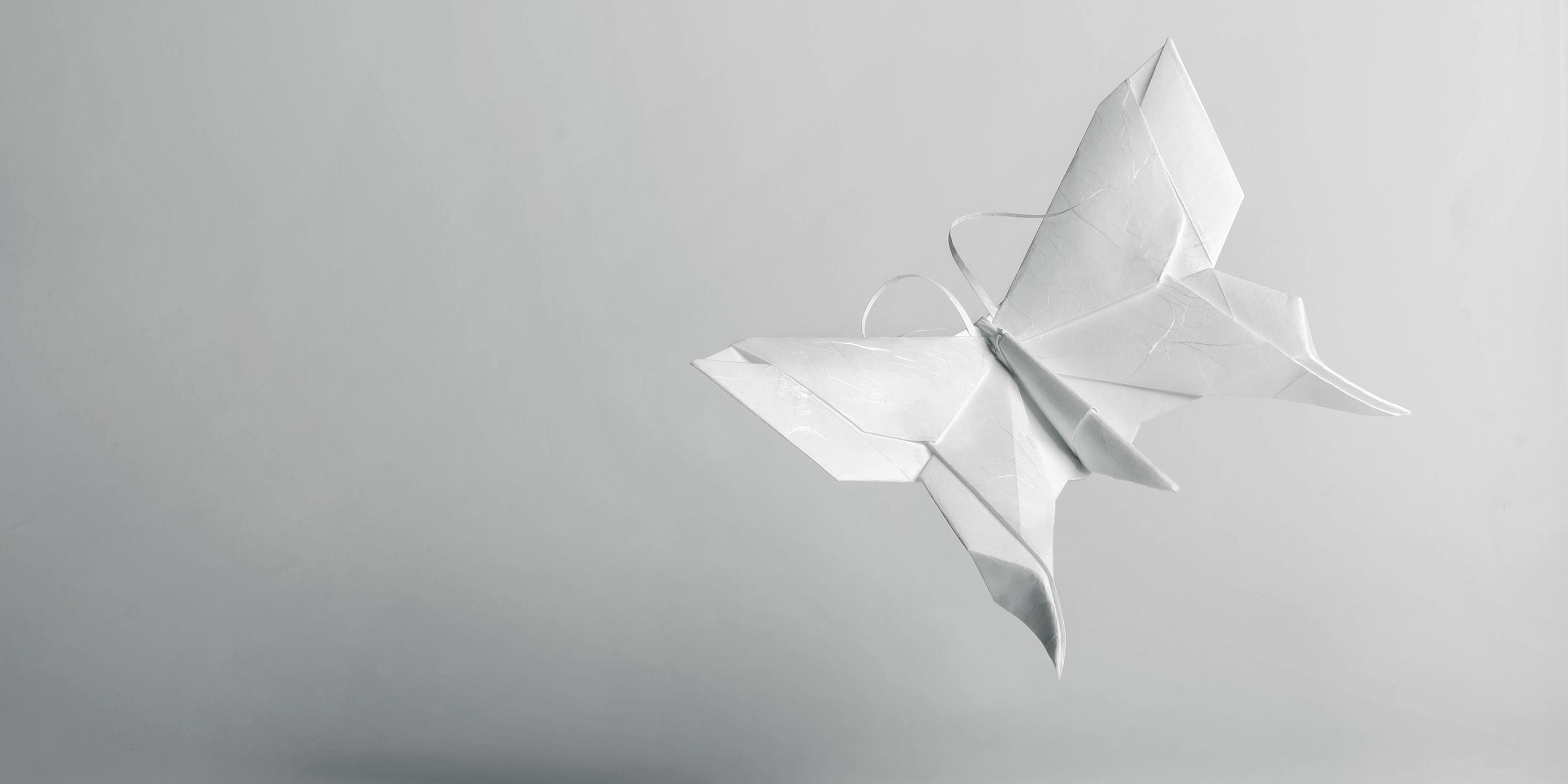 Origami-Motiv Schmetterling